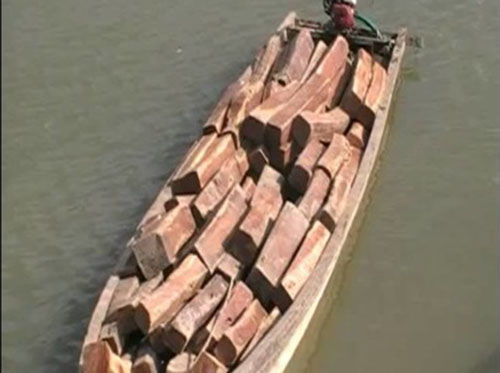timber-boat-500x281